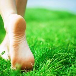 Benefits of barefoot walking in the morning